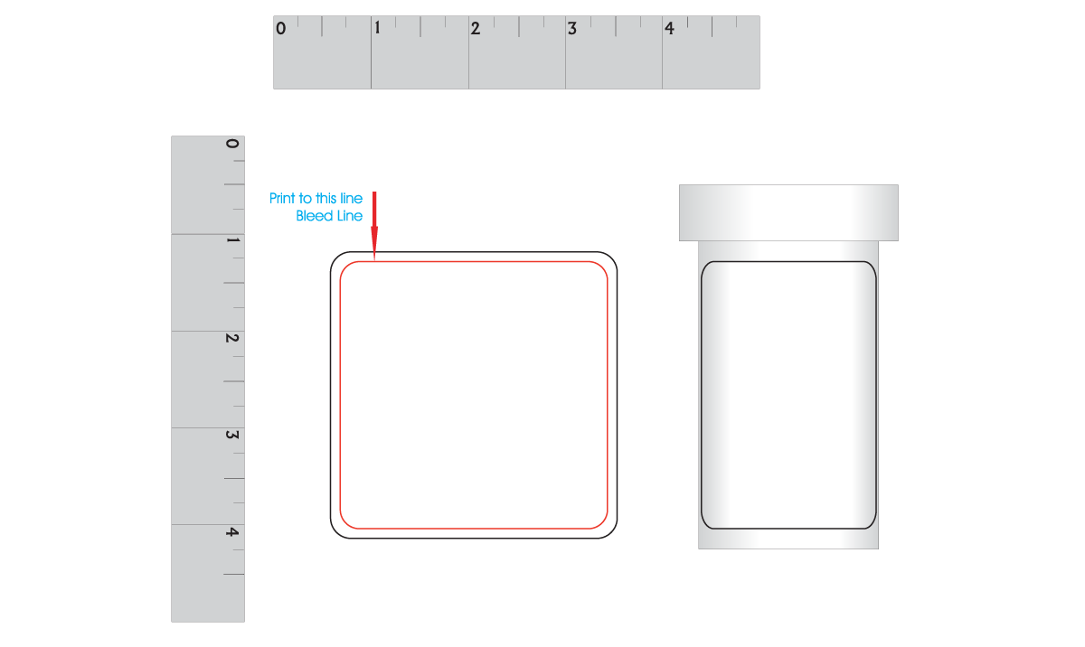 Artwork Layout - Large Pill Bottle